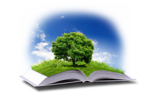 open book with green nature world